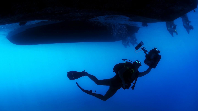 diver-85913_1920.jpg