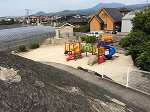 +fuji_9269